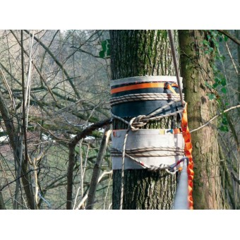 Baumschutz